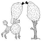 Reclam, Der Hund ist ein Zweidrittelmensch: Über Pudel