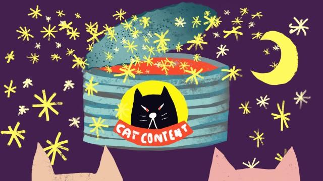 Cat Content Dose